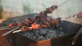油煎在串的肉 野餐 影视素材