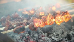 油煎在串的肉 野餐 股票录像