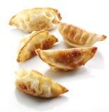 油煎的中国饺子 库存照片