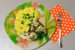 油煎的丸子用沙拉酱肉小汤和土豆泥 免版税库存照片