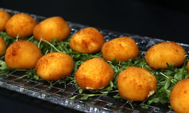 油煎的乳酪球用无盐干酪乳酪开胃菜填装了 免版税库存照片