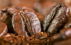从油煎的咖啡粒的背景 库存图片
