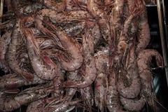 油煎的国王大虾 水多的盘 免版税图库摄影