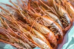 油煎的大虾,虾是立即可食的 库存图片