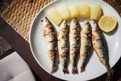 油煎的开胃鲭鱼、切片柠檬和黄色土豆在一块白色板材说谎,站立在一张木桌上 免版税库存图片