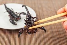 油煎的异乎寻常的蝎子 免版税库存照片