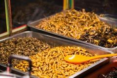 油煎的昆虫喜欢臭虫,蚂蚱,幼虫,毛虫,并且蝎子销售作为食物 免版税库存图片