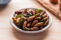 油煎的昆虫-木蠕虫昆虫酥脆与pandan在油煎以后 免版税库存照片