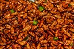 油煎的昆虫 图库摄影