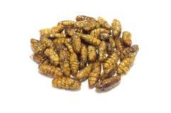 油煎的桑蚕蛹 免版税库存图片