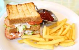 油煎的油煎方型小面包片用蕃茄和炸薯条 免版税库存照片