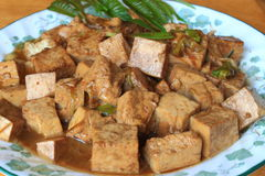 油煎的牌照豆腐 免版税库存图片