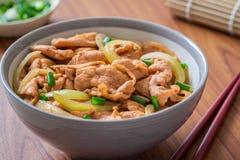 油煎的猪肉用在碗的米 日本食物样式, Donburi 库存图片