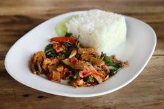 油煎的猪肉用甜basi和白色茉莉花黏米饭 免版税图库摄影
