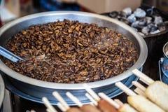 油煎的甲虫或昆虫 库存图片