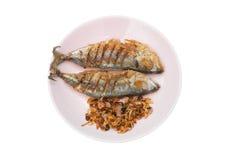 油煎的盐味的鲭鱼夫妇用油煎的青葱和辣椒在板材,被隔绝 库存图片