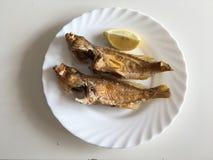 油煎的石斑鱼 免版税库存图片