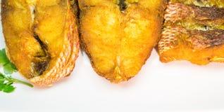 油煎的红鲷鱼v 免版税图库摄影