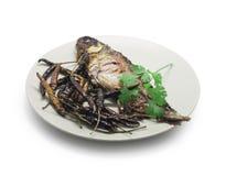 油煎的腌制鱼、鲤鱼鱼和干辣椒用香菜  免版税库存图片