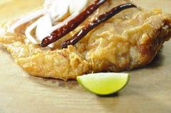 油煎的腌制鱼用切片青葱和辣椒涂鸡蛋 免版税库存图片