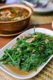 油煎的苦涩金瓜叶子用牡蛎调味汁 免版税图库摄影