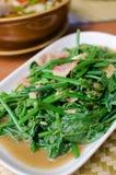 油煎的苦涩金瓜叶子用牡蛎调味汁 免版税库存照片