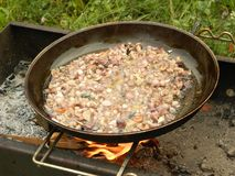 油煎的蘑菇 免版税库存照片