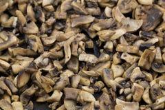 油煎的蘑菇 免版税图库摄影