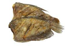 油煎的蛇皮鱼 免版税库存照片