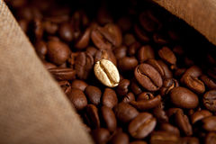 油煎的豆咖啡 库存照片