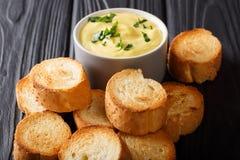 油煎的长方形宝石和乳酪奶油沙司垂度特写镜头 水平 库存照片