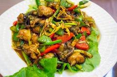 油煎的青蛙肉用绿色和红辣椒 免版税库存图片