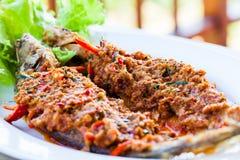 油煎的颊须板料鱼用辣味番茄酱 免版税库存图片