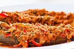 油煎的颊须板料鱼用辣味番茄酱 库存图片