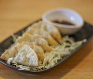 油煎的饺子或Gyoza 免版税库存照片