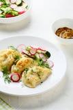 油煎的饺子用土豆 免版税库存图片