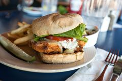 油煎的鱼三明治用油炸物 免版税库存图片