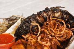油煎的鱼和洋葱圈开胃膳食  免版税库存照片