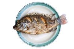 油煎的鱼被隔绝的背景 免版税库存图片