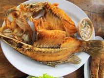 油煎的鱼银色栖息处用鱼子酱 库存图片