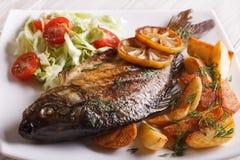 油煎的鱼鲤鱼用土豆和沙拉在板材 免版税库存图片