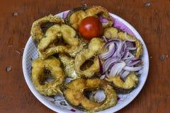 油煎的鱼,薯条,凉拌卷心菜,Hush Puppies,是包含被打击的或面包油煎的鱼的膳食 图库摄影