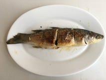 油煎的鲈鱼 免版税库存图片