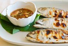 油煎的鲭鱼用辣调味汁 库存图片