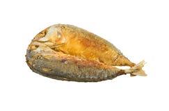 油煎的鲭鱼 免版税图库摄影