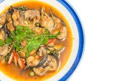 油煎的鲶鱼泰国食物 免版税库存照片
