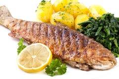 油煎的鳟鱼 免版税图库摄影
