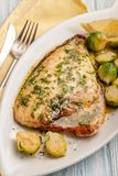油煎的dorado鱼片与菜 库存照片