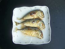 油煎食物是迫切的鲭鱼 免版税库存照片