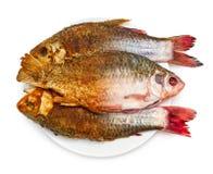 油煎鱼 免版税库存照片